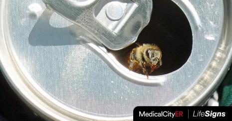 Stings-Bee-FB